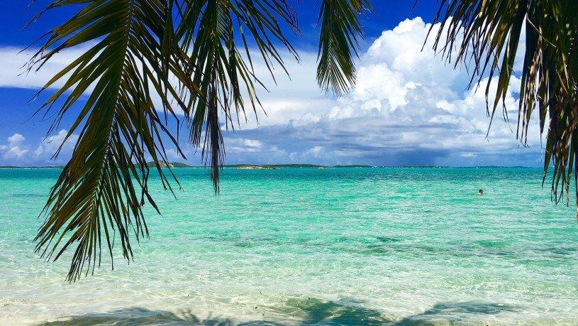 immagine spiaggia tropicale